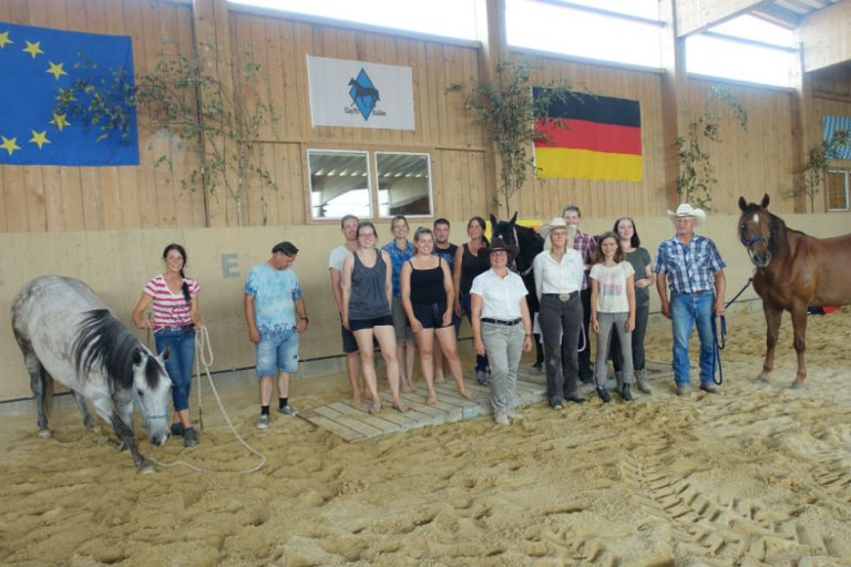 Breed show of EMFTHA e.V. at the Clay Pit Stables facility on August 6, 2018 in Altusried, Bavaria
