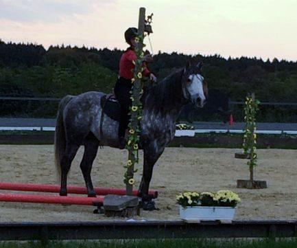 Horsemanshipturnier vom 11.-13.10. 2019 in Aegidienberg
